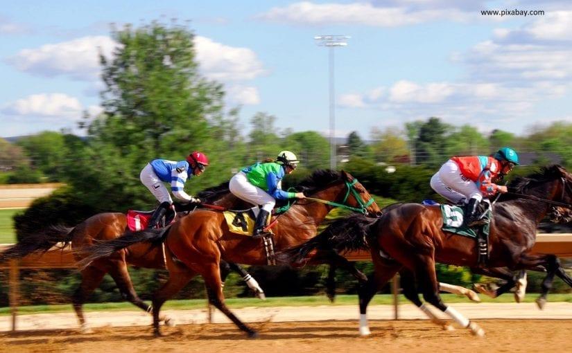 Christmas Horse Racing.Horse Racing Christmas Dilemmas Making Christmas Profits