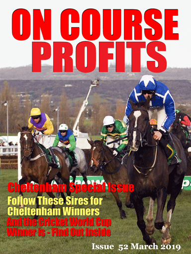Cheltenham On Course Profits